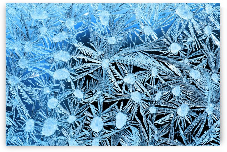 Close Up Of Frost Crystals With Cyan Lighting; Calgary, Alberta, Canada by PacificStock