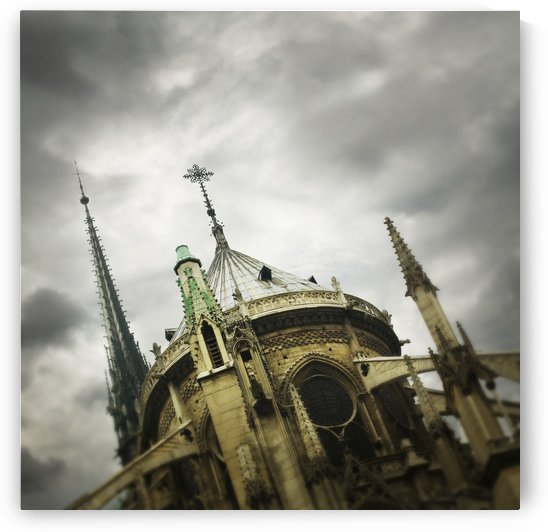 Notre Dame Cathedral; Paris, France by PacificStock