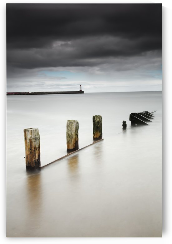 Wooden posts in the tranquil water;Berwick northumberland england by PacificStock