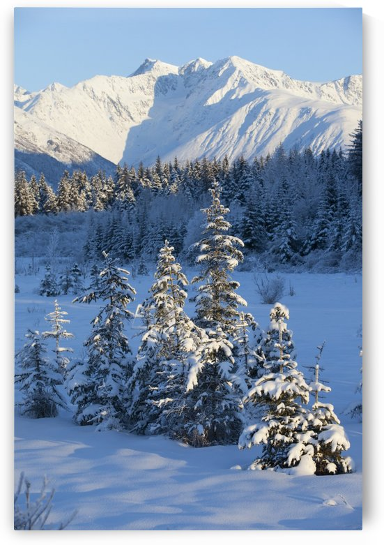 Scenic View Of Chugach Mountains And Snowcovered Landscape, Southcentral Alaska, Winter by PacificStock