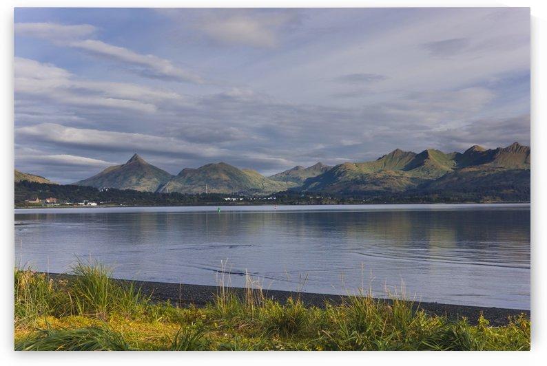 Scenic View Of Women's Bay, Kodiak Island, Alaska, Fall by PacificStock