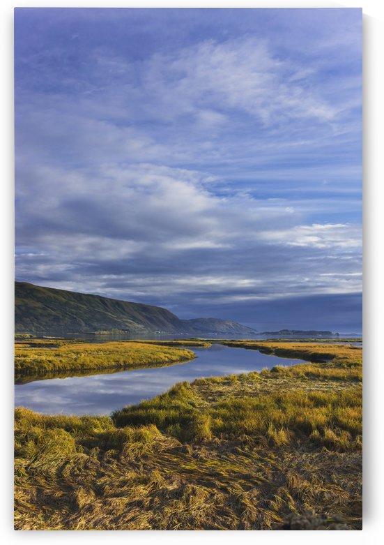 Scenic View Of Tidal Slough Along Womens Bay, Kodiak Island, Southwest Alaska, Fall by PacificStock