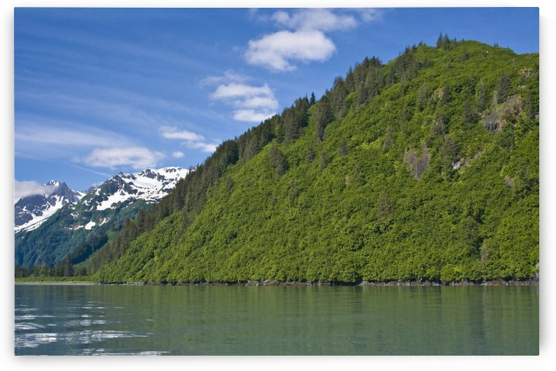 View Of Port Valdez, Shoup Bay, Prince William Sound, Southcentral Alaska, Summer by PacificStock