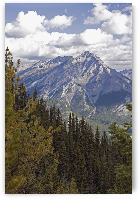 Rugged canadian rocky mountains;Banff alberta canada by PacificStock