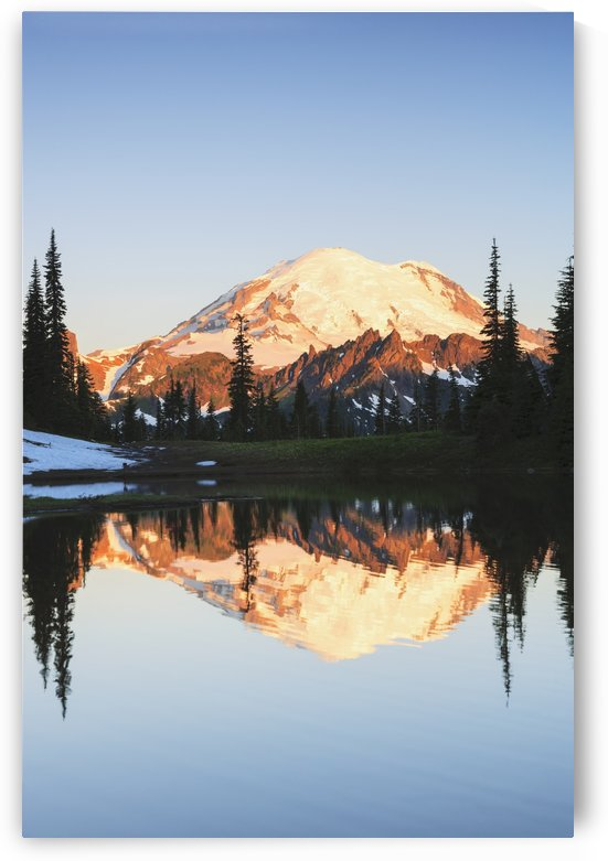 Mount rainier reflected in a pond at sunrise near tipsoo lake mount rainier national park;Washington united states of america by PacificStock