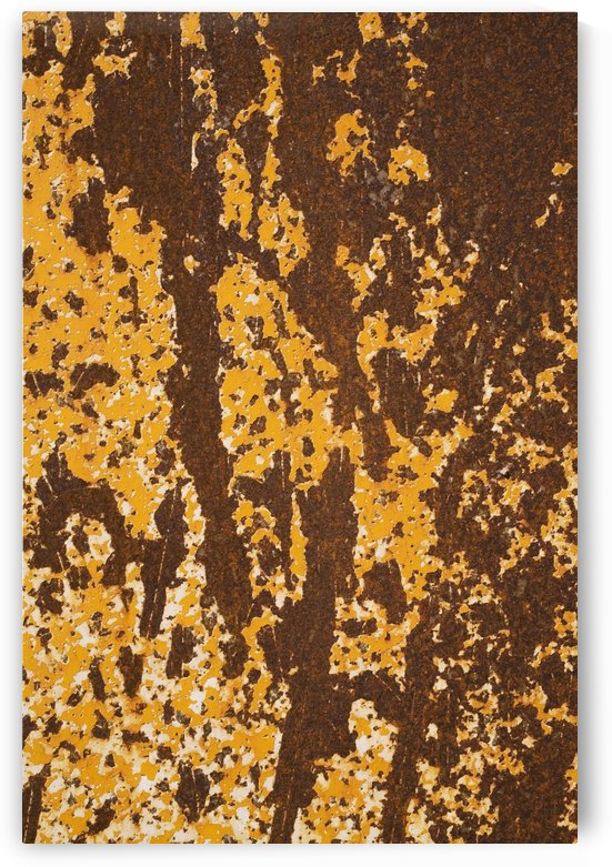 Close up of peeling yellow paint and rust patterns on a ferous metal surface;Laval quebec canada by PacificStock