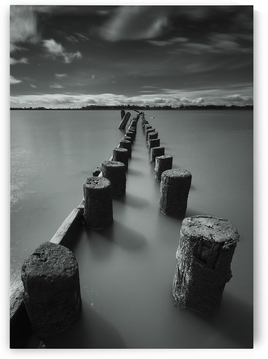 Wooden posts leading out into the river;Vancouver british columbia canada by PacificStock