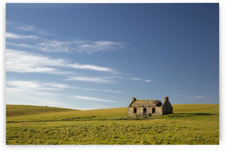 An abandoned farm building alone in the middle of a field;Dumfries and galloway scotland by PacificStock