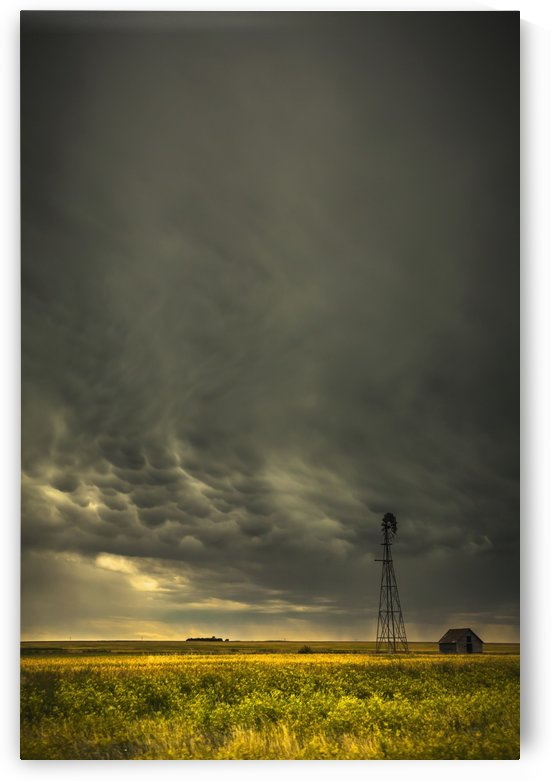 Mammatus storm clouds above a windmill on the saskatchewan prairies;Saskatchewan, canada by PacificStock