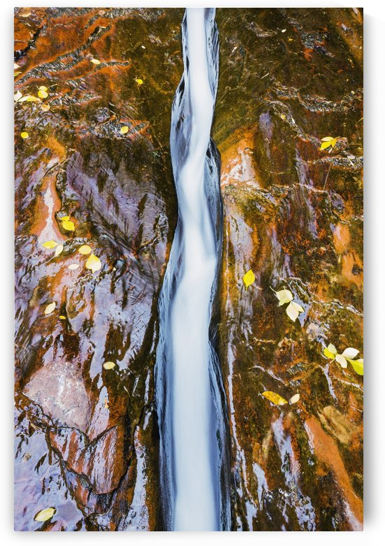 Water flowing in beautiful stone rivet along the subway trail in zion national park;Utah, united states of america by PacificStock