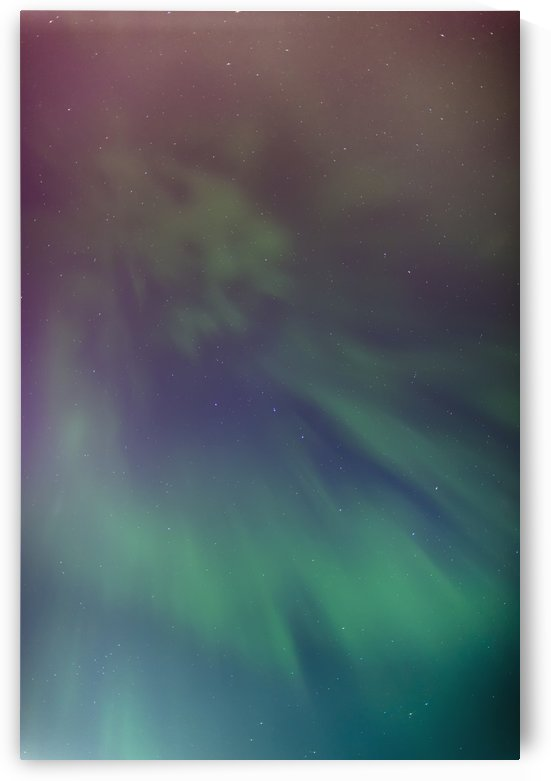 A green aurora borealis corona in the sky above the tony knowles coastal trail in winter;Anchorage alaska united states of america by PacificStock