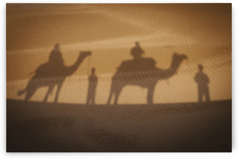 Shadow of camels with riders on the sand;India by PacificStock