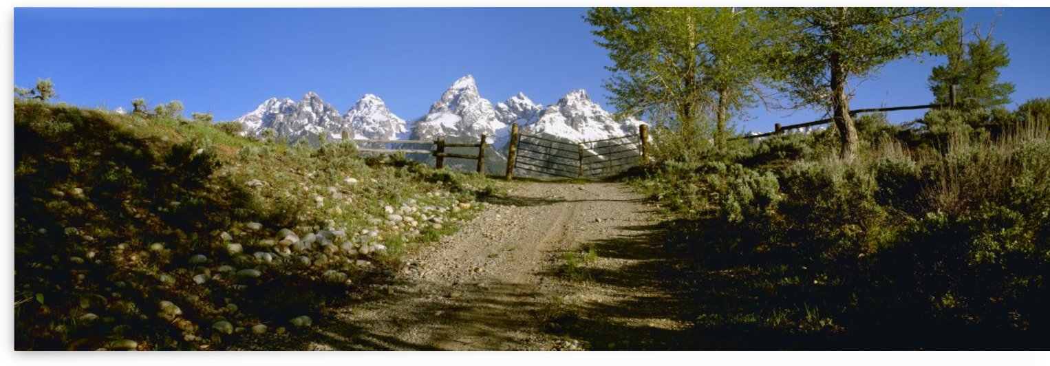 Agriculture - Gravel ranch road and gate, with the snow capped Grand Teton mountains in the background / Teton County, Wyoming, USA. by PacificStock