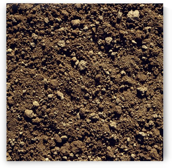 Agriculture - Closeup of clay soil / Monterey County, California, USA. by PacificStock