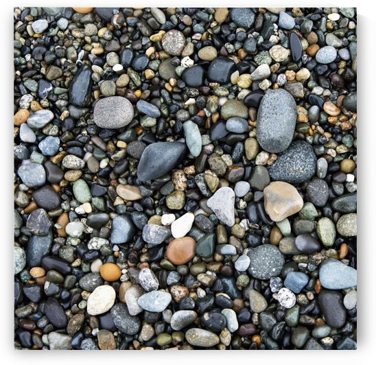 Wet Rocks On The Beach; Oak Harbor, Washington, United States Of America by PacificStock