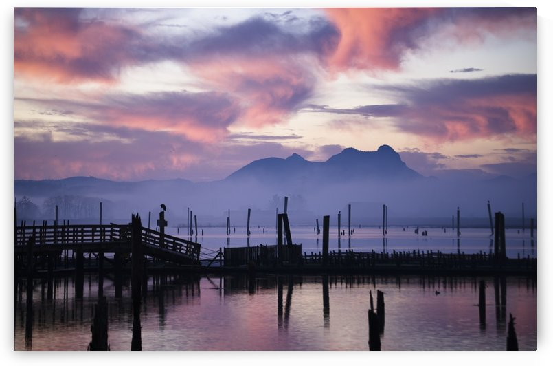 Youngs Bay and Saddle Mountain; Astoria, Oregon, United States of America by PacificStock