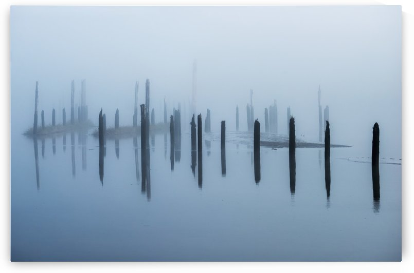 Old pilings disappear into the mist; Astoria, Oregon, United States of America by PacificStock