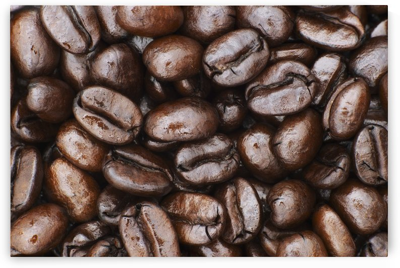 Medium dark roast Kona coffee beans close up; Holualoa, Big Island, Hawaii, United States of America by PacificStock
