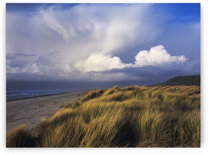 Clouds move inland over Umpqua Beach; Winchester Bay, Oregon, United States of America by PacificStock