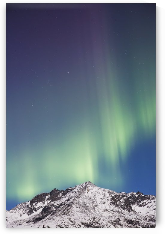 Northern lights above the snow covered Talkeetna mountains, Hatchers Pass State Recreation Area; Alaska, United States of America by PacificStock