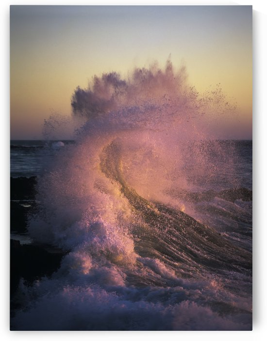 A wave glowing pink breaks on the shore at sunset; Yachats, Oregon, United States of America by PacificStock