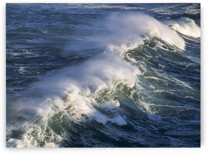 Wave breaking at Shore Acres State Park; Charleston, Oregon, United States of America by PacificStock