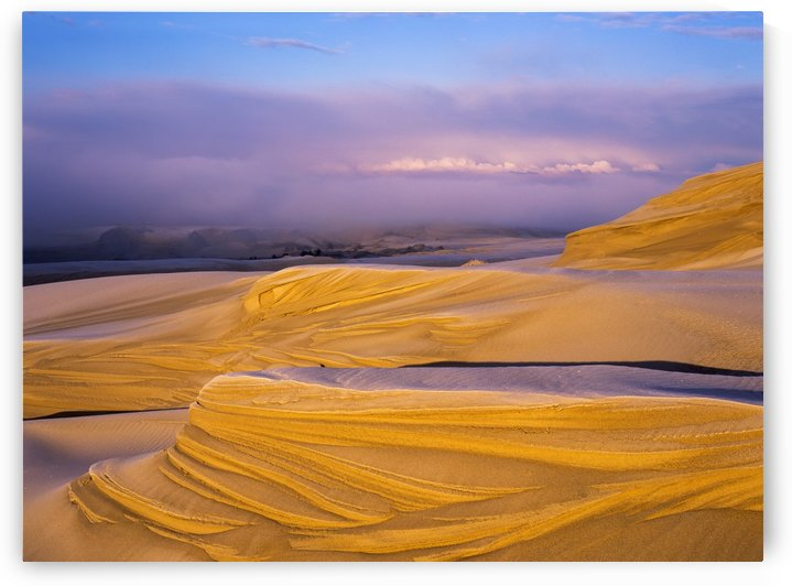 Frost on the Umpqua Dunes; Lakeside, Oregon, United States of America by PacificStock