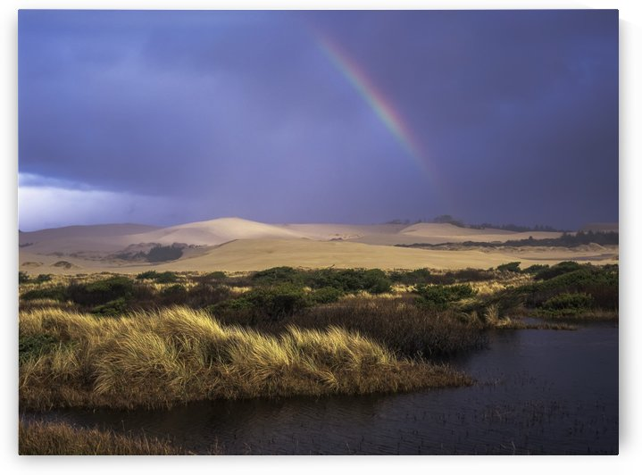 A rainbow over the Umpqua Dunes, Oregon Dunes National Recreation Area; Oregon, United States of America by PacificStock