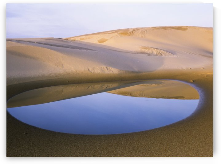 An ephemeral pond mirrors the Umpqua Dunes, Oregon Dunes National Recreation Area; Lakeside, Oregon, United States of America by PacificStock