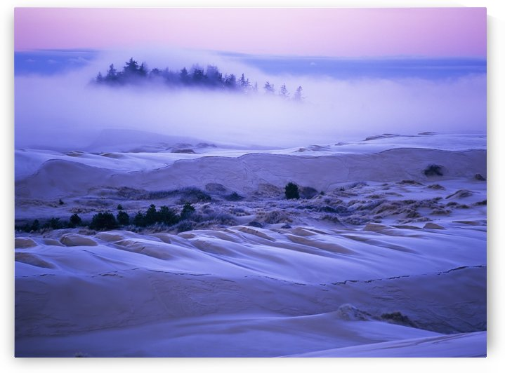 Fog over the sand dunes at dawn after a heavy frost; Lakeside, Oregon, United States of America by PacificStock