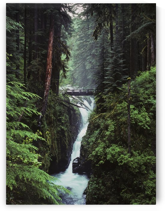 Sol Duc Falls plunges down the cliffs; Forks, Washington, United States of America by PacificStock
