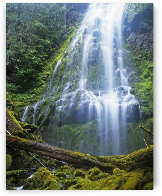 Proxy Falls plummets down the bluffs; Sisters, Oregon, United States of America by PacificStock
