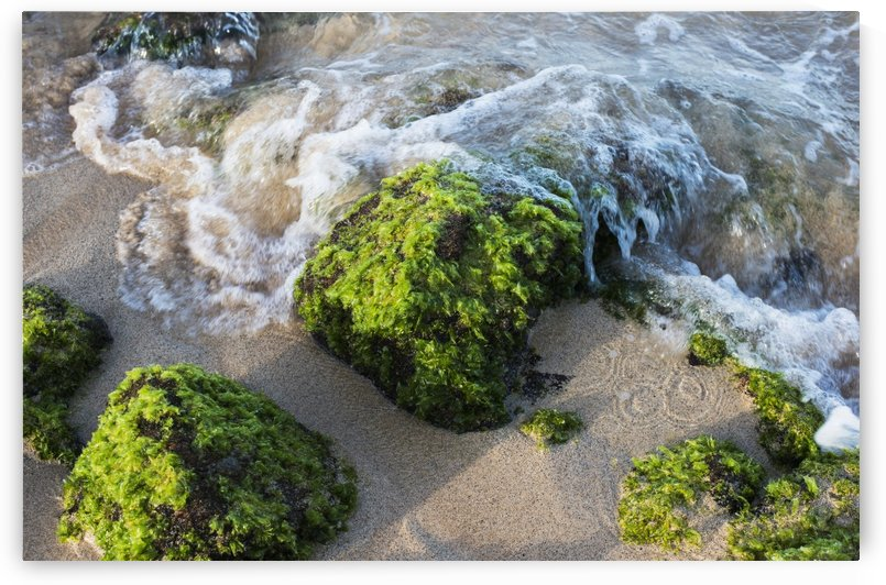 Surf breaks on the shore on moss covered rocks; Poipu, Kauai, Hawaii, United States of America by PacificStock