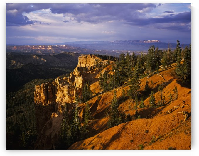 Evening light brightens the ridges at Bryce Canyon National Park; Ruby's Inn, Utah, United States of America by PacificStock