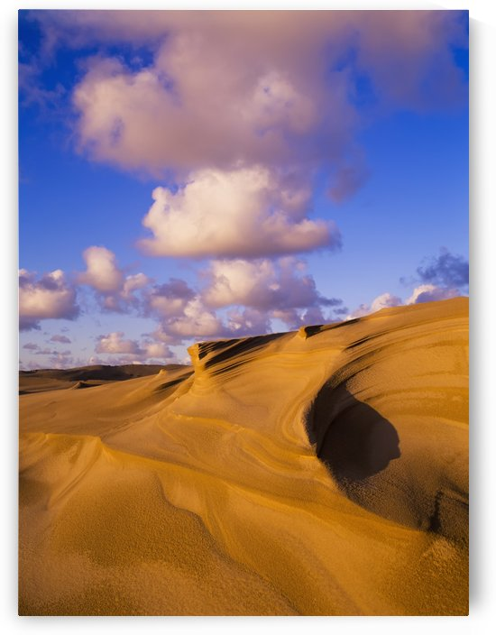 Clouds and dunes are shape-shifters; Lakeside, Oregon, United States of America by PacificStock