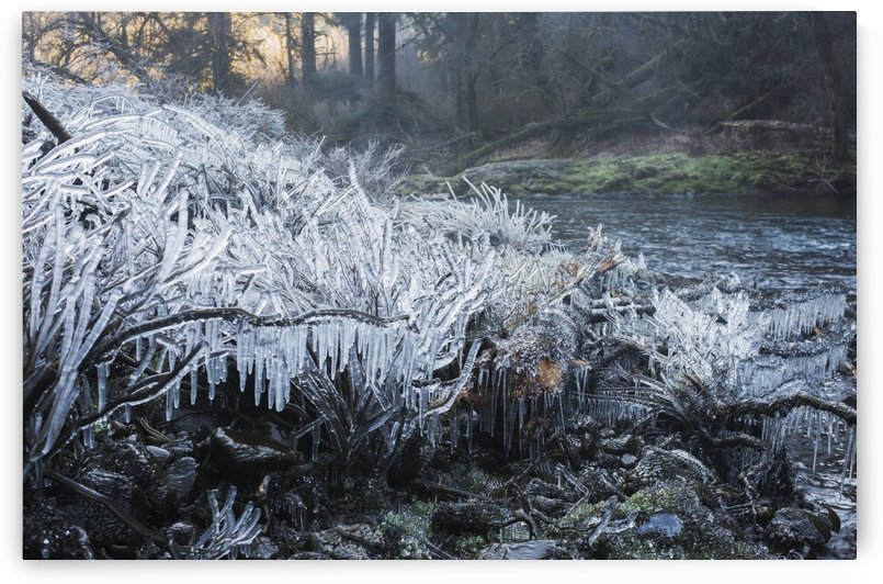 Ice forms near a waterfall; Olney, Oregon, United States of America by PacificStock
