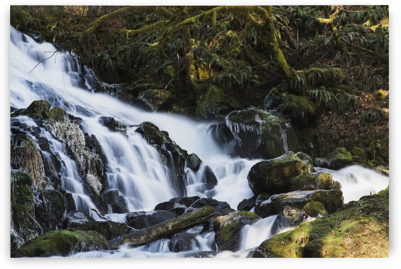 Fishhawk Falls is found at Lee Wooden County Park; Jewell, Oregon, United States of America by PacificStock