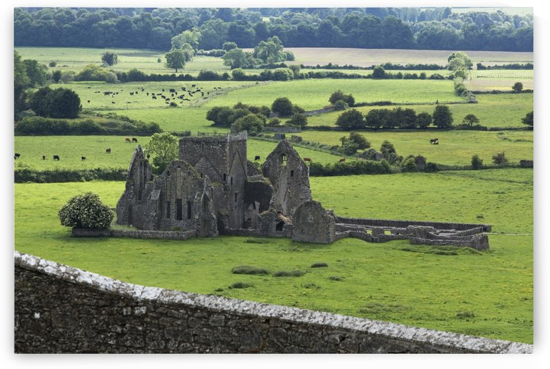 Hore Abbey near Cashel; County Tipperary, Ireland by PacificStock