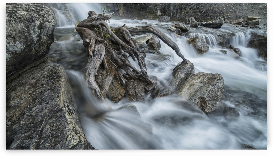 Tangle Creek waterfalls, Jasper National Park; Alberta, Canada by PacificStock