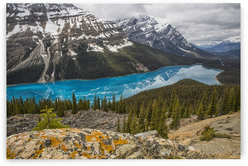 The aquamarine waters of Peyto Lake, Banff National Park; Alberta, Canada by PacificStock