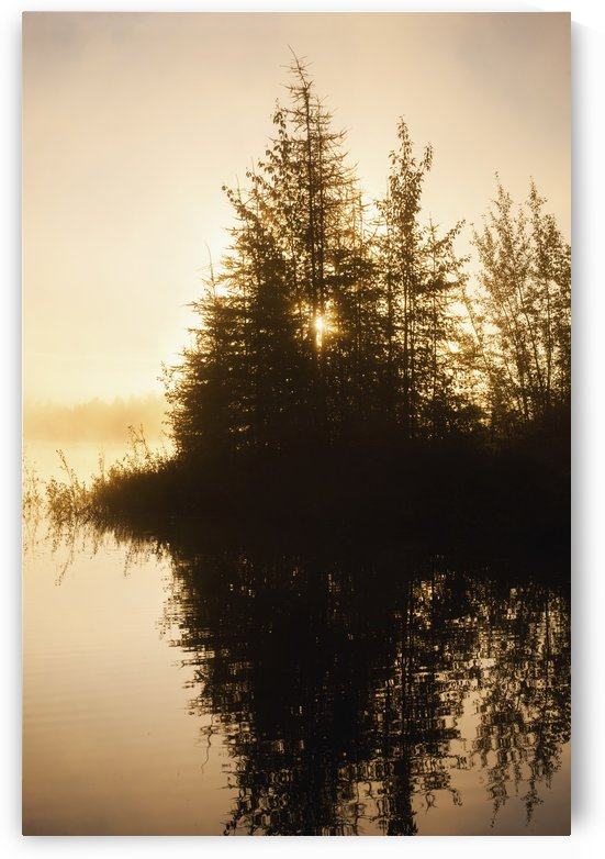 Sunset view of trees reflected in Chena Lake, Delta Junction, Interior Alaska by PacificStock