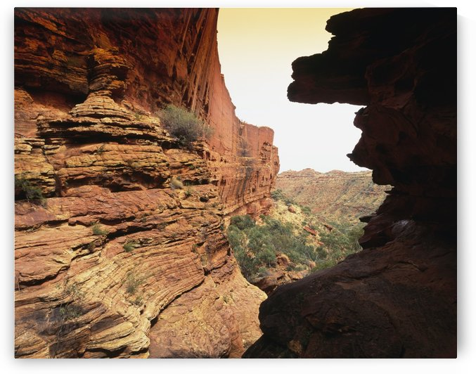 Kings Canyon; Northern Territory, Australia by PacificStock