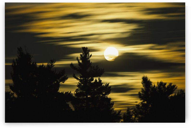 Moon and clouds, Mont-Saint-Bruno National Park, Monteregie region; Quebec, Canada by PacificStock