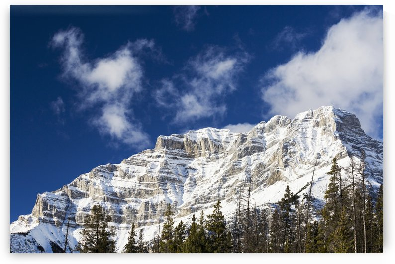 Snow covered mountain peak with evergreen trees with blue sky and clouds; Banff, Alberta, Canada by PacificStock