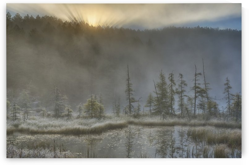 Early morning mist over a small pond along the Rock Lake Road as sun shines through the fog, Algonquin Park; Ontario, Canada by PacificStock