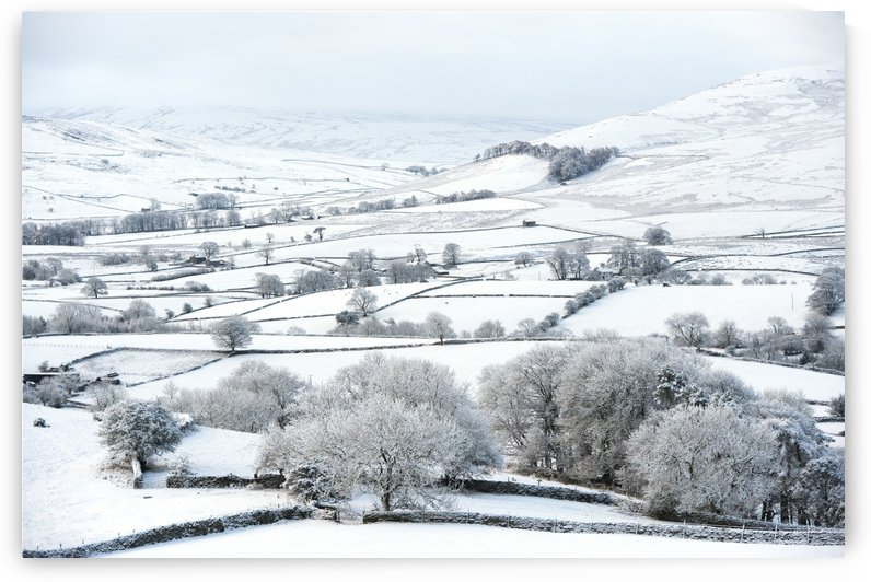 Peaceful snow scene in the Howgills, near Ravenstonedale; Cumbria, England by PacificStock