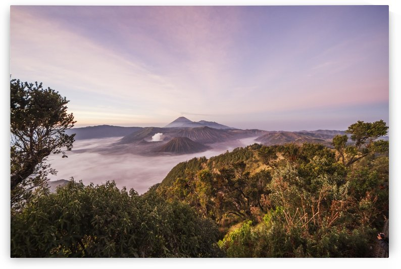 Tengger Caldera with steaming Mount Bromo, Mount Batok and Mount Semeru in the background, seen from the western viewpoint at dawn, Bromo Tengger Semeru National Park, East Java, Indonesia by PacificStock