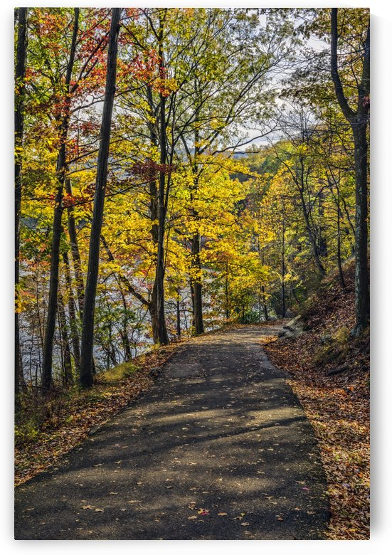Autumn foliage in Bear Mountain State Park; Bear Mountain, New York, United States of America by PacificStock