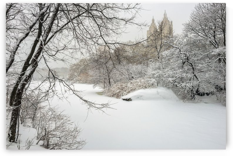 The lake frozen over and snow-covered, Central Park; New York City, New York, United States of America by PacificStock