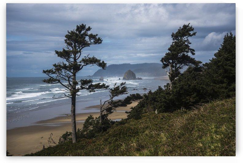 Haystack Rock and Tillamook Head, coastal landmarks; Tolovana, Oregon, United States of America by PacificStock